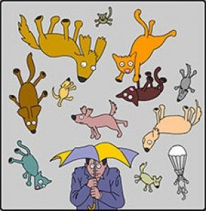 raining-cats-and-dogs-clipart blog or facebook