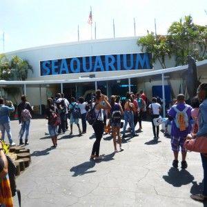 TALK Fort Lauderdale Seaquarium
