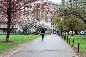 TALK Boston Activities at boston city common