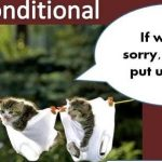 Conditional clauses are also called conditional sentences and are also referred to as the 'if clause'